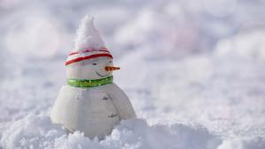 snow-man-3008179_1920